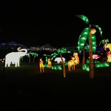 Animal Set At Magic Lantern Festival