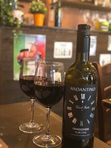 Sangiovese Rubicone wine